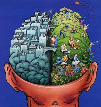 Imparare a parlare e a leggere avendo metà cervello